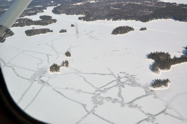 Derby news sebago lake rotary derbyfest statewide for Maine ice fishing derbies