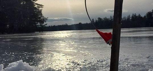Ifw ice fishing reports maine 39 s sebago lake cumberland for Maine fishing laws 2017